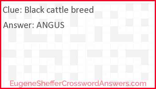 Black cattle breed Answer