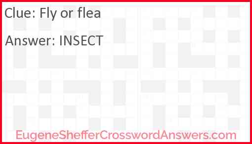 Fly or flea Answer