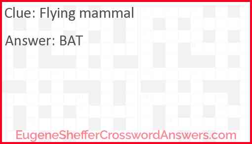 Flying mammal Answer