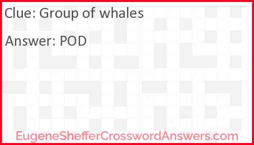 Group of whales Answer
