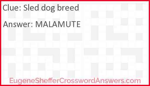 Sled dog breed Answer